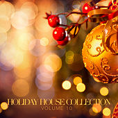 Holiday House Collection, Vol. 10 by Various Artists