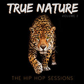 True Nature: The Hip Hop Sessions, Vol. 2 by Various Artists