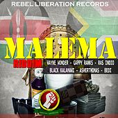 Malema Riddim (Rebel Liberation Records Presents) by Various Artists