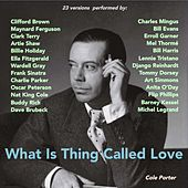 What Is This Thing Called Love (23 Versions Performed By:) by Various Artists