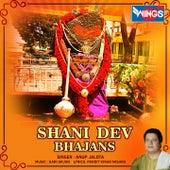 Shani Dev Bhajans by Anup Jalota