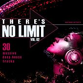 There's No Limit, Vol. 2 (30 Massive Deep-House Tracks) by Various Artists