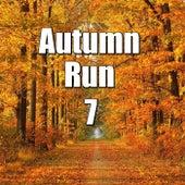 Autumn Run, Vol.7 von Various Artists