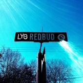 Redbud by Lys