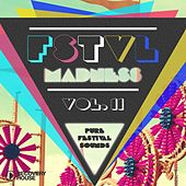 FSTVL Madness, Vol. 11 - Pure Festival Sounds by Various Artists