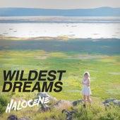 Wildest Dreams by Halocene