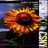 Pickin' On Crosby, Stills, Nash & Young by Pickin' On