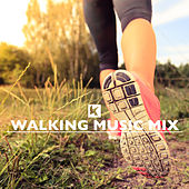Walking Music Mix by Various Artists