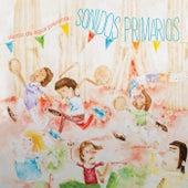 Sonidos Primarios by Viento De Agua