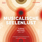 Tobias Michael: Musicalische Seelenlust by Various Artists