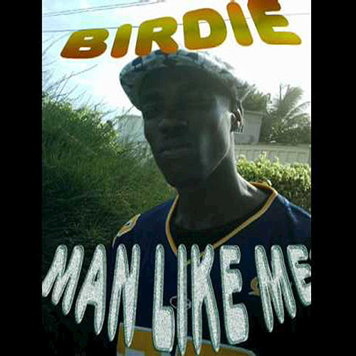 Man Like Me by Birdie