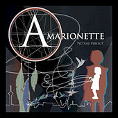 Picture Perfect (Bonus Tracks) - Single by Amarionette