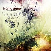 The 10,000 Steps by Biomusique