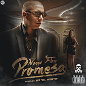 Promesa by Ñengo Flow
