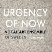 Urgency of Now by Jan Yngwe