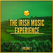 The Irish Music Experience, Vol. 1 (A Selection of Traditional Music from Ireland) by Various Artists