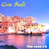 Che cosa c'è by Gino Paoli