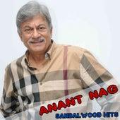 Anant Nag Sandalwood Hits by Various Artists
