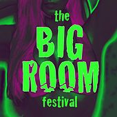 The Big Room Festival by Various Artists