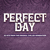 Perfect Day by Various Artists