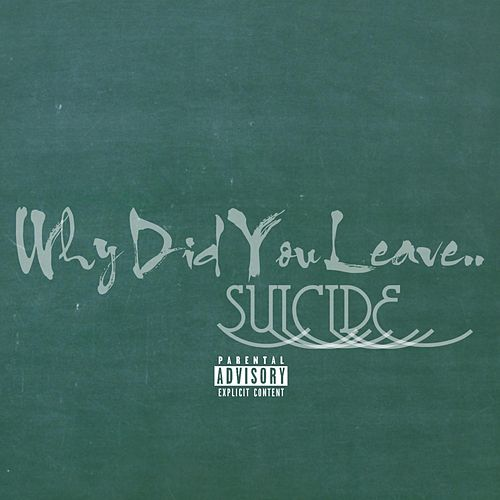 Why Did You Leave by Suicide