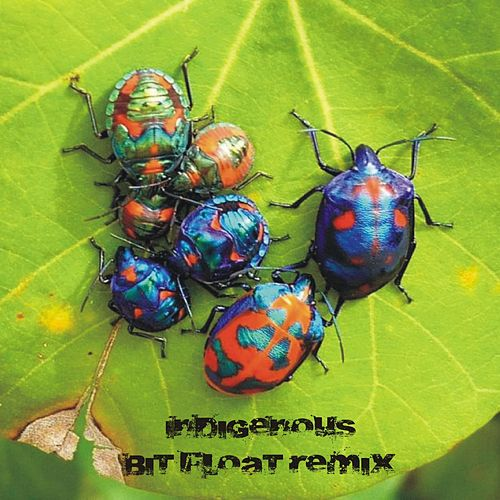 Bring Back the After Hours (Bit Float Remix) by Indigenous