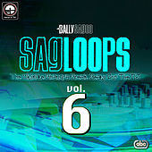 Sagloops Volume 6 - The Ultimate Bhangra Break Beats For The DJ by Bally Sagoo