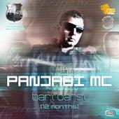Bari Barsi (12 Months) by Panjabi MC