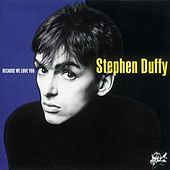 Because We Love You by Stephen Duffy
