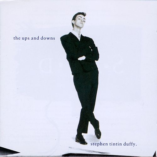 The Ups and Downs: A Very Beautiful Collection by Stephen Duffy