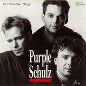 Der Stand Der Dinge by Purple Schulz