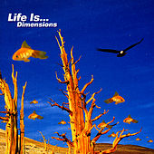 Life Is…Dimensions by Various Artists
