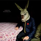 The Waiting Room by Tindersticks