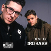 Best Of 3rd Bass by 3rd Bass