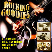 Rocking Goodies von Various Artists