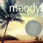 Moody Deep House, Vol. 5 by Various Artists