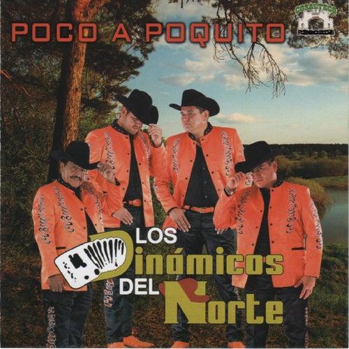 Poco a Poquito by Los Dinamicos Del Norte