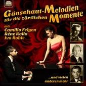 Gänsehaut-Melodien für die zärtlichen Momente by Various Artists