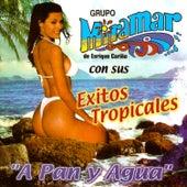 Con Sus Éxitos Tropicales by Grupo Miramar