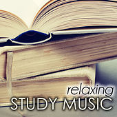 Relaxing Study Music - Background Homework Songs for the Summer Break by Various Artists