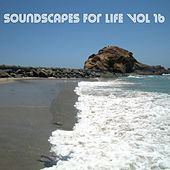Soundscapes For Life, Vol. 16 by Francesco Landucci