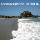 Soundscapes For Life, Vol. 16 by Francesco Landucci