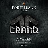 Awaken (Cranq Anthem 2015) (feat. Ixchel) by Point Blank (Rock)