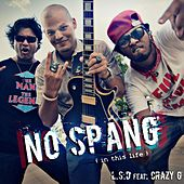 No Spang (in This Life) [feat. Crazy G] by L.S.D.
