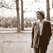 Brilliant Trees by David Sylvian
