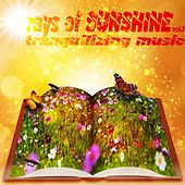 rays of Sunshine Vol.1 (Tranquilizing music) by Various Artists