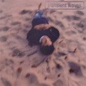 Transient Waves by transient waves