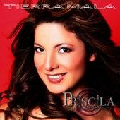 Tierra Mala by Priscila Y Sus Balas De Plata