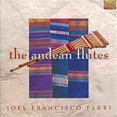 The Andean Flutes by Joel