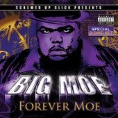 Forever Moe by Big Moe